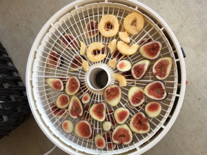 Figs and Apples Drying