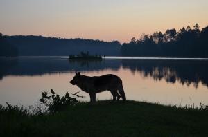 Ranger at Payne Lake (Talladega NF, Alabama, USA)