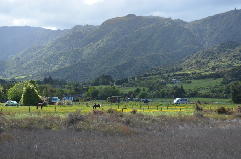 Marahau Valley with our camper van in the middle ground