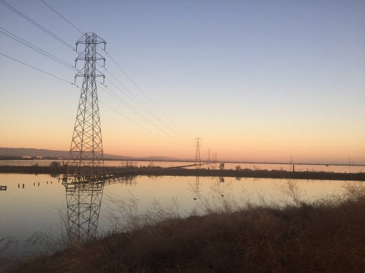 Power lines along the slough