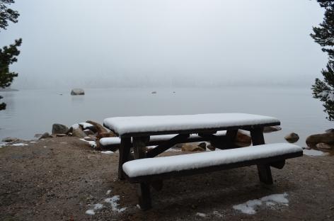 Bench on Silver Lake, California