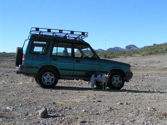 Sheba at Lake Pleasant, AZ