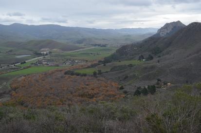 Riparian area below Black Hill