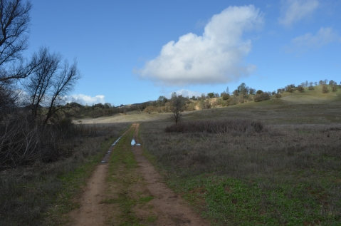 Blinn Ranch Trail