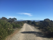 Road along the ridge