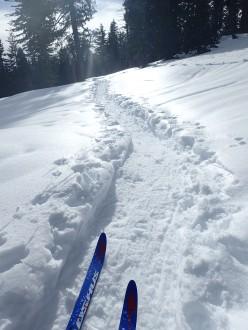 Fun on skis