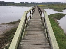Walkway over the slough
