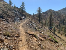 PCT to the Sisson-Callahan trail junction