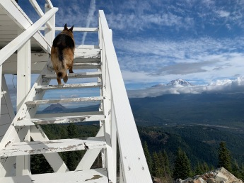 Cassius climbing the lookout steps